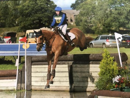 Chew Valley Equestrian